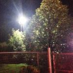 Pollard LED area lighting