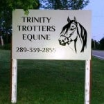 Trinity Equine PIC cropped